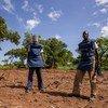 联合国排雷行动处的一个作业小组在检查南苏丹中赤道州的一个排雷场。