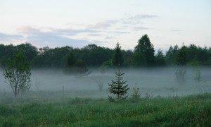Kumzero in July. Location: Kumzero, Vologda region, Russia.