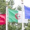 علم الجزائر (وسط) أمام مقر الأمم المتحدة في نيويورك.