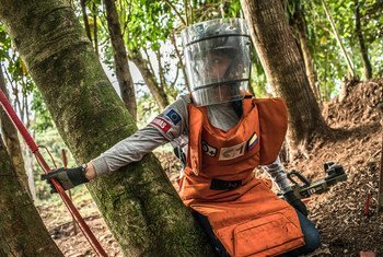 Through the 2016 peace agreement between the Government of Colombia and the Revolutionary Armed Forces of Colombia (FARC), the Colombian mine action sector has expanded significantly providing new employment opportunities for both men and women.