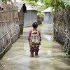District de Kurigram, nord du Bangladesh : un enfant patauge dans les eaux sur le chemin de l'école lors des inondations d'août 2016.
