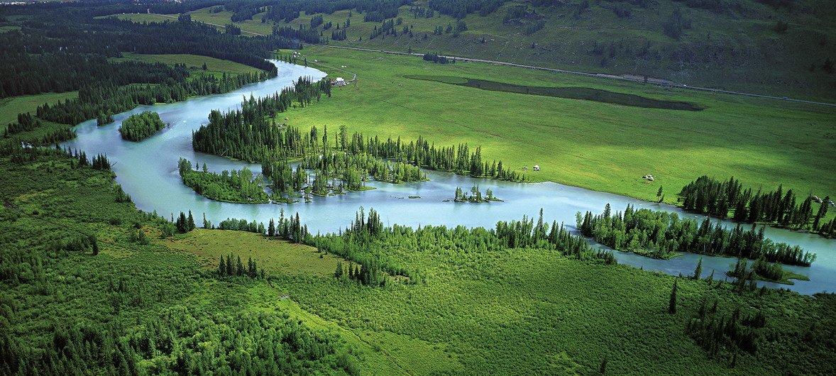 位于中国新疆的阿尔泰山和湿地保护区景观。