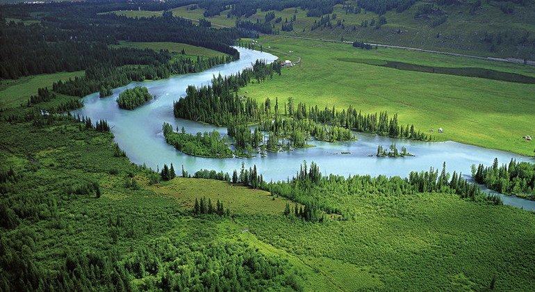 El Programa de las Naciones Unidas para el Desarrollo lleva a cabo un proyecto para proteger las montañas de Altai y los humedales del noroeste de China.