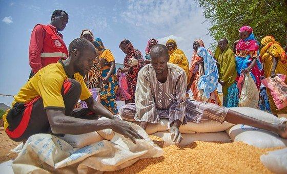 El Programa Mundial de Alimentos distrubuye comida entre desplazados en asentamiento de Murta, en la localidad sudanesa de Kadugli.