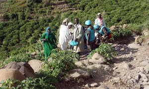 UNAMID and Humanitarian Country Team providing assistance to mudslide victims in East Jebel Marra, South Darfur. (September 2018)