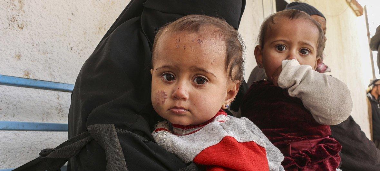 叙利亚霍尔营地的妇女和儿童。