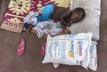 PMA acelerando as distribuições de alimentos, cada família receberá semanalmente sacos de mantimentos de 21kgs