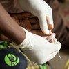 Mhudumu wa afya nchiini Malawi akitoa damu ya mgonjwa kwa ajili  ya kuchunguza Malaria.