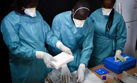 Especialistas realizam testes para comprovar que a droga se trata de cocaína