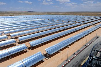 صفوف من الألواح الشمسية في محطة توليد الطاقة الشمسية الحرارية في عين بني مطر في المغرب. (ملف 2010)