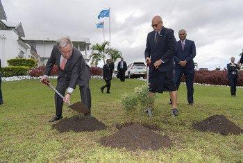 Katibu Mkuu wa Umoja wa Mataifa antonio Guterres kushoto anayepanda mti akiwa na rais wa Fiji Jioji Konrote 16 Mei 2019