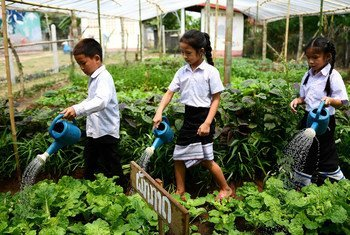 Local school children water the vegetable garden at the Ban Bor Primary School in Xay District, Lao People's Democratic Republic. 14 May 2019.