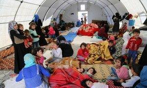 أسر سورية فرت من الأعمال القتالية قرب كفر لوسين في سوريا، تقيم في خيام وفرتها جمعية الهلال الأحمر التركية. 9 مايو/أيار 2019.