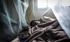 Un enfant dort protégé par une moustiquaire.