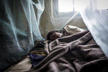 90% всех случаев малярии приходится на африканские страны.