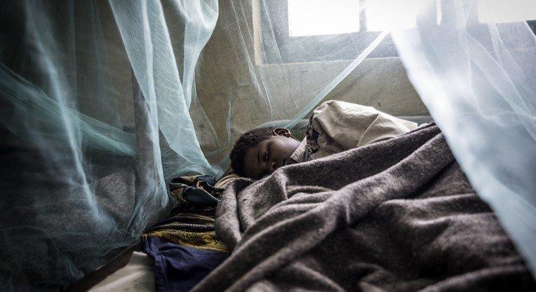 Il faut accélérer la mise au point de nouveaux outils pour relever le défi de l'éradication du paludisme (OMS)