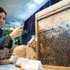 Всемирный день пчел отметили в штаб-квартире ФАО в Риме
