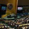 Генассамблея ООН.