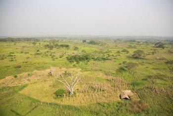 Farmer hut in Great Rift Valley. (10 January 2015)