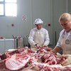 Serbs and Albanian women working together in a butchery in Kosovo.