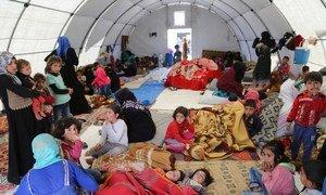 Famílias que fogem das hostilidades estão abrigadas em tendas perto de Kafr Lusein, na Síria, depois de passar muitos dias ao relento.