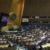 联合国大会于2019年6月7日选出五个新的联合国安理会非常任理事国。
