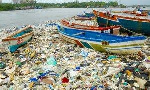 印度孟买的海滩开展的清理工作表明,海洋中的塑料垃圾每年如何导致数百万海鸟死亡。