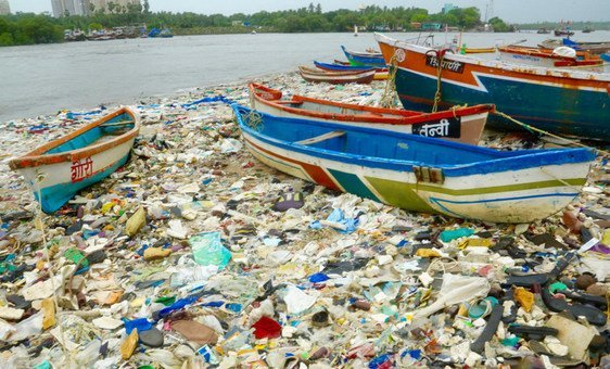 A beach clean-up in Mumbai, India, illustrates how ocean debris leads to the deaths of millions of seabirds every year