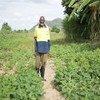Iniciativa pretende espelhar a solidariedade entre os países africanos para melhorar a agricultura e a segurança alimentar.