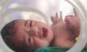 Un nourrisson né prématurément reçoit un traitement à l'hôpital Alsabeen, Sana'a, Yémen (2018).