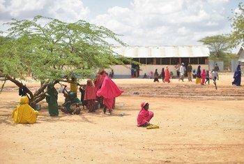 2017年11月15日,在肯尼亚东部的达达布难民营,一些聚集在登记中心附近。