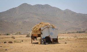 Makazi ya muda kwenye eneo la kuhifadhi wakimbizi katika wilaya ya Abs, jimboni Hajjah, nchini Yemen. Eneo hili lipo kilometa 150 kutoka kaskazini mwa jimbo la Hudaydah. (8 Mei 2019)