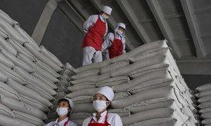 Le PAM soutient une usine de produits alimentaires dans le district de Ryongsong, en Corée du Nord.