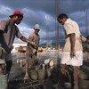 Estímulo foi dado pelos setores de construção e serviços públicos no Timor-Leste.