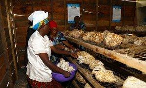 El Fondo Fiduciario de Apoyo a las Víctimas de Explotación y Abusos Sexuales proporciona formación a las mujeres de la República Democrática del Congo para que puedan ganarse la vida.