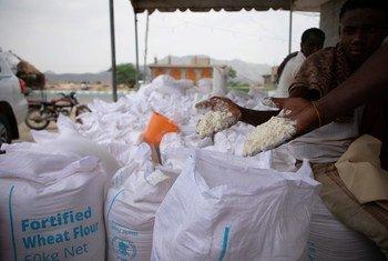 De la farine livrée par le PAM au camp de Khudaish au Yémen, le 13 juin 2019.