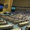 हेट स्पीच की रोकथाम के लिए संयुक्त राष्ट्र प्रणाली में व्यापक स्तर पर एक रणनीति को शुरू किया गया है.
