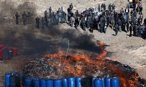 On the outskirts of Kabul, the Afghan Ministries of the Interior and Counter-Narcotics burned more than 20 tons of illicit drugs and alcohol.