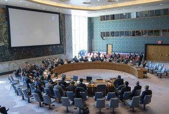 مجلس الأمن يجدد ولاية بعثة يوناميد في حتى نهاية أكتوبر/تشرين الأول. 27 يونيه/حزيران 2019.