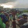 为躲避迫害从缅甸逃往孟加拉国的罗兴亚难民。