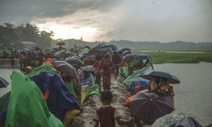 In August-September 2017, widespread violence forced over 700,000 Rohingya to flee their homes in Myanmar for safety in Bangladesh.