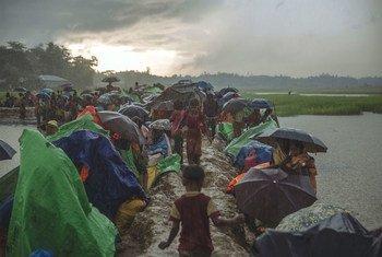 म्याँमार से बचकर भागे रोहिंज्या शरणार्थी बांग्लादेश के शरणार्थी शिविरों में भी अक्सर मौसम की मार जैसी मुश्किलों का सामना कर रहे हैं.