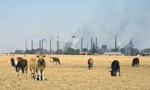 Farm land borders industry in Vanderbijlpark, South Africa (file).