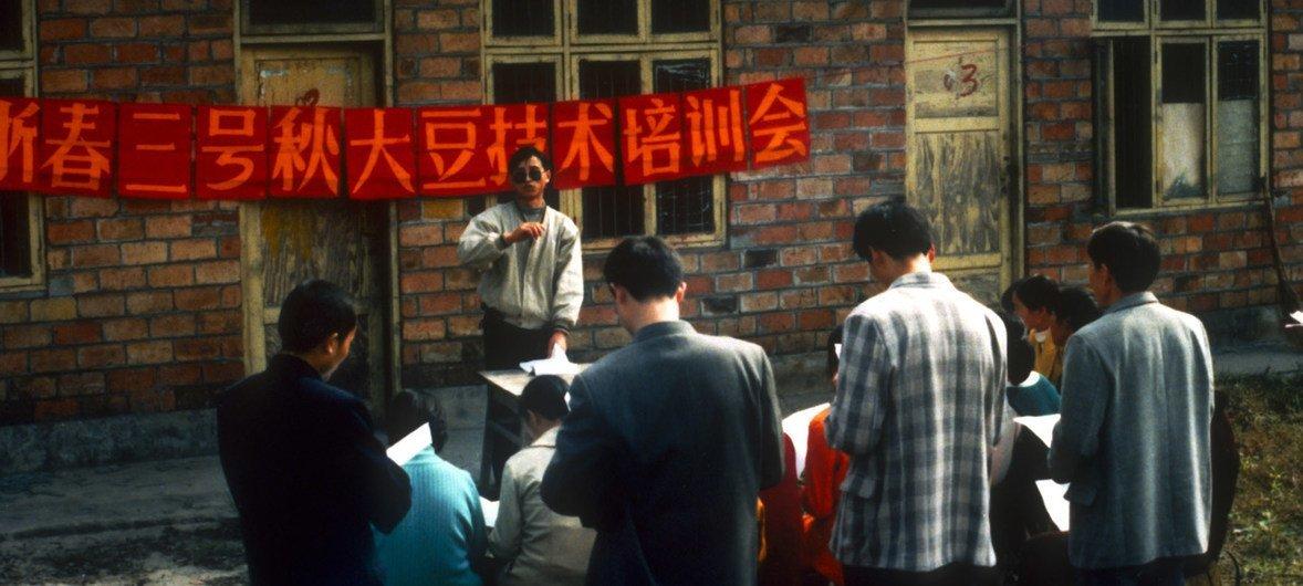 粮农组织农业技术人员与乐山农民举行秋大豆培训会。