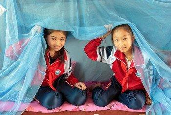 世界卫生组织表示,中国自2016年8月以来未发现一起本土感染的疟疾病例。