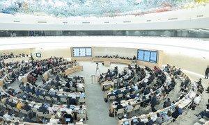 La salle du Conseil des droits de l'homme des Nations Unies (photo d'archives).