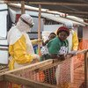 Mhudumu wa afya akimchunguza mtoto aliyebebwa na mlezi iwapo ana Ebola au la kwenye kituo cha kutibu Ebola huko Beni, jimboni Kivu Kaskazini nchini DR Congo. (24 Machi 2019)