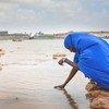 Reserva de agua en el distrito Banderbayla de Puntlandia, construido por el Programa de las Naciones Unidas para el Desarrollo en colaboración con el Ministerio de Medio Ambiente de este estado autónomo de Somalia.