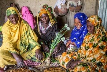 نساء في قرية بوكيات بتمبكتو، يعرضون بصلا طازجا من حديقة الخضروات قامت اليونيسف، بدعم من السويد، بإعادة تأهيل مضخة مياه يدوية فيها. (13 آذار/مارس 2019)