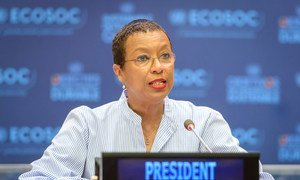 Inga Rhonda King, President of the UN Economic and Social Council (ECOSOC).